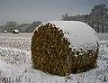 Snow bale - panoramio.jpg