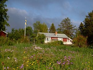 "Summer house - Swedish ""sommarstuga"""