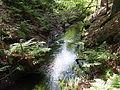 Sothrieth Oberlauf 29.jpg