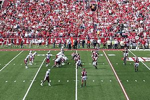 2013 South Carolina Gamecocks football team - South Carolina Gamecocks offense (in white) prepares to snap the ball against the Arkansas Razorbacks defense