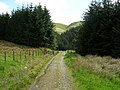 Southern Upland Way Near Cogshead - geograph.org.uk - 179002.jpg
