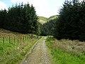 Southern Upland Way Near Cogshead - geograph.org.uk - 179002.jpg