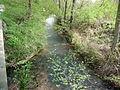 Speyerbach-Hochspeyerbach 1.jpg