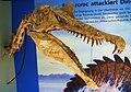 Spinosaurus aegyptiacus.jpg