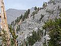 Spring Mountains North Loop trail 11.jpg