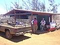 Starr-030731-0049-Casuarina equisetifolia-shed with Kim and Lyman-Lua Makika-Kahoolawe (24636743155).jpg