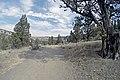 Steelhead Falls (15177015867).jpg