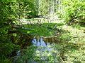 Steinbachklause, Nationalpark Bayerischer Wald.jpg