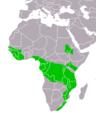 Stephanoaetus coronatus distribution map small 2.png