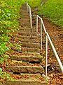 Steps at Chellow Dean (2956064590).jpg