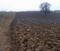 Still half a field to plough^ - geograph.org.uk - 1100529.jpg