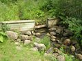 Stream at Clear Lake (203307497).jpg