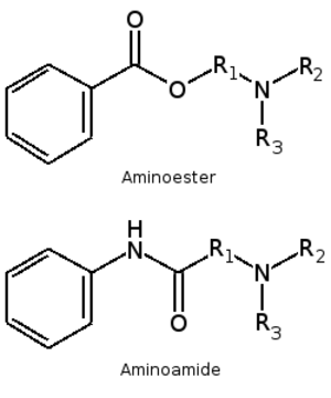 Local anesthetic nerve block - Aminoesters and aminoamides. There is an aromatic lipophilic portion connected to an intermediate chain and amine hydrophilic portion.