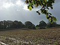 Stubble near Ogbourne St George - geograph.org.uk - 265688.jpg