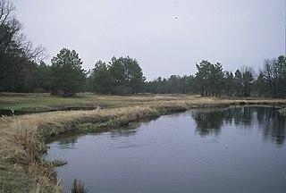 Stsviha river in Belarus and Ukraine