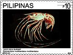Stylodactylus multidentatus 2013 stamp of the Philippines.jpg