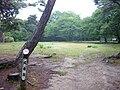 Sumoto Castle 08.jpg