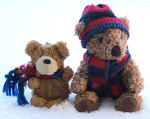 Little Teddies