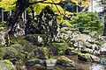 Suwa Yakata-ato Garden of Ichijodani Asakura Family Historic Ruins07s3s4592.jpg