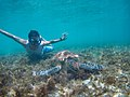 Swimming-with-turtles-apo-island-archie-mercader.jpg