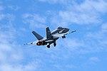 Swiss Air Force - F-A18.jpg