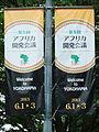 TICAD Ⅴ Banner,Yokohama Japan.jpg