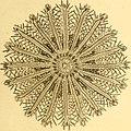 Tableau encyclopédique et méthodique des trois règnes de la nature (1791) (14765759654).jpg