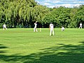 Takeley CC v. South Loughton CC at Takeley, Essex, England 098.jpg