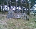 Tamnagorn Stone Circle - geograph.org.uk - 356061.jpg