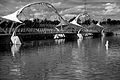 Tempe Town Lake Pedestrian Bridge, black and white.jpg