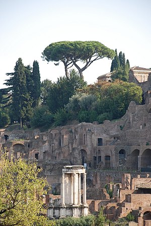 Vesta (mythology) - Temple of Vesta in a 2009 photo
