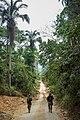 Terra Indígena Cachoeira Seca, Pará (40326428554).jpg
