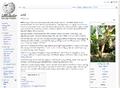 Tewiki-arati-top-part.png