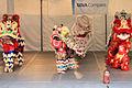 Texas folklife festival chinese2 2013.jpg
