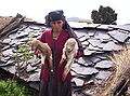 Than Gaon village woman and her billy goats.jpg
