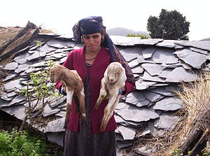 Woman from Than Gaon in Uttarakhand with two g...