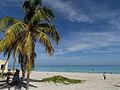 The Beach (5982395338).jpg