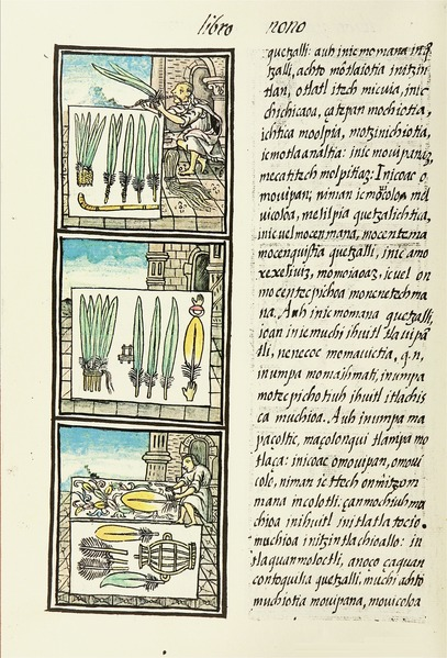 File:The Florentine Codex- Aztec Feather Painters V.tiff