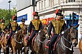 The King's Troop Royal Horse Artillery - geograph.org.uk - 1464992.jpg