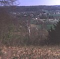 The Mole Valley from Norbury Park - geograph.org.uk - 809715.jpg