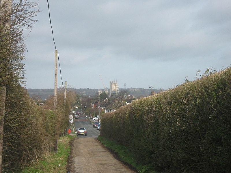 File:The North Downs Way heads to Canterbury - geograph.org.uk - 1776247.jpg