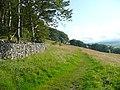 The Pennine Bridleway, Langcliffe - geograph.org.uk - 1448216.jpg