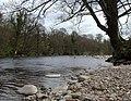 The River Wharfe, Paradise Laithe - geograph.org.uk - 425376.jpg
