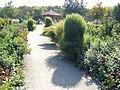 The TNU Botanical Garden in Simferopol, Crimea, Ukraine 15.JPG
