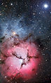 The Trifid Nebula.jpg