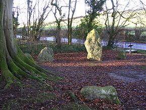 The Winterbourne Abbas Nine Stones - geograph.org.uk - 25044.jpg