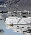 Tour boat among the icebergs on Tasman Lake.jpg