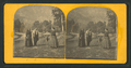 Tourists and a tame deer, from Robert N. Dennis collection of stereoscopic views.png