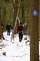 Trail (457631817).jpg