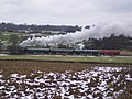 Train on the Kent and East Sussex Railway - geograph.org.uk - 1711807.jpg